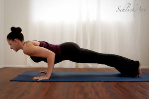 Chaturanga Dandasana ( Four Limbed Staff Pose)