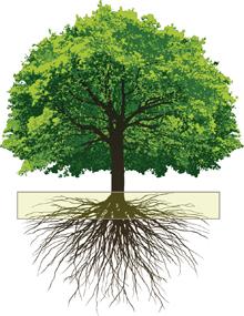 TreeGraphic_web
