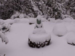 My Buddha Statue on the side of my house