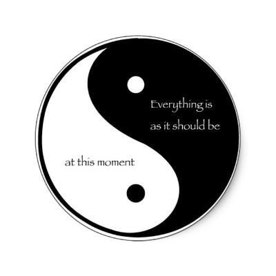 My Yin Experience |